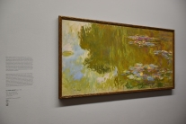 Nenúfares. Monet