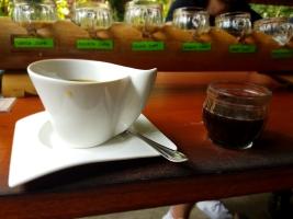 Así te ponen el café de luwak.